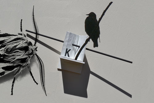 k-a-letourneau-k-to-the-starling-1-de-5-2014