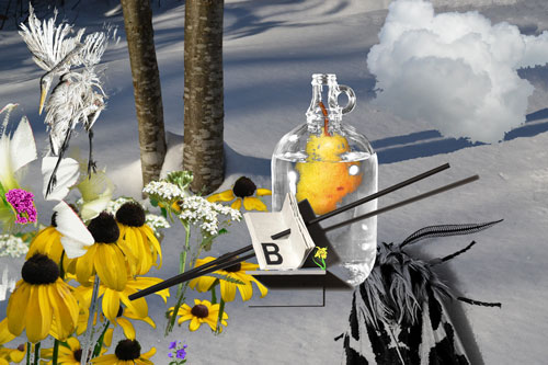 nature-morte-a-la-lettre-b-still-life-to-letter-b-2012