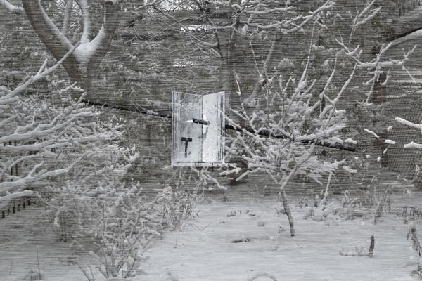 t-en-hiver-2014